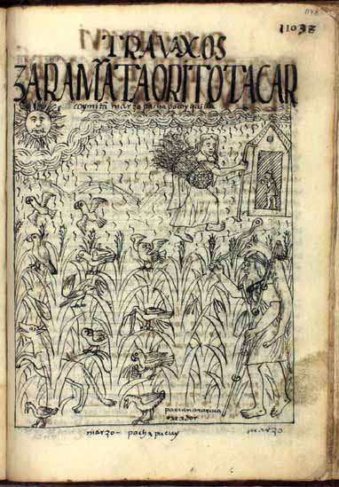 March: Time of chasing parrots from the maize fields; Pacha Puquy Killa, month of the maturation of the soil (p.1148)